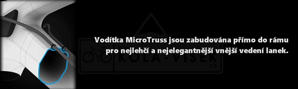 microtruss